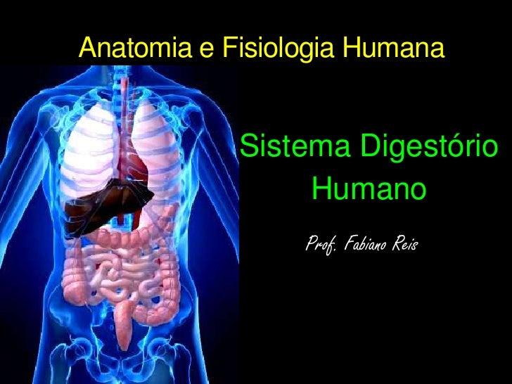 Anatomia e Fisiologia Humana<br />Sistema Digestório<br />Humano<br />Prof. Fabiano Reis<br />
