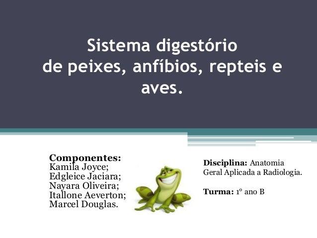 Sistema digestório de peixes, anfíbios, repteis e aves. Componentes: Kamila Joyce; Edgleice Jaciara; Nayara Oliveira; Ital...