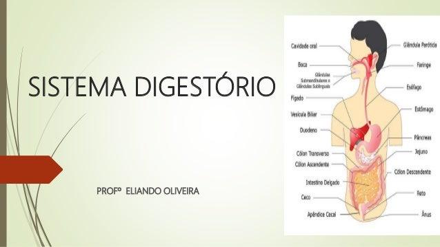 SISTEMA DIGESTÓRIO PROFº ELIANDO OLIVEIRA