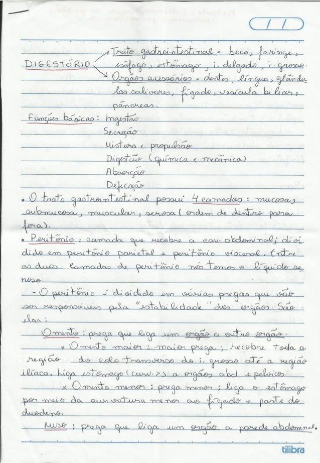 Sistema_Digest_RESUMO