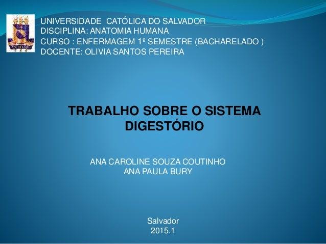 UNIVERSIDADE CATÓLICA DO SALVADOR DISCIPLINA: ANATOMIA HUMANA CURSO : ENFERMAGEM 1º SEMESTRE (BACHARELADO ) DOCENTE: OLIVI...