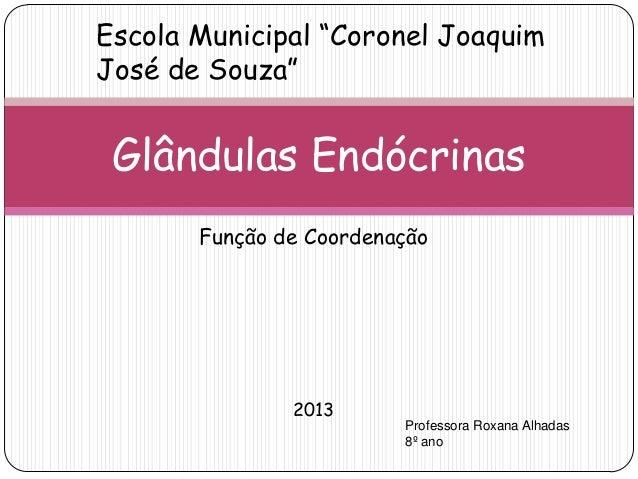 """Função de Coordenação 2013 Glândulas Endócrinas Escola Municipal """"Coronel Joaquim José de Souza"""" Professora Roxana Alhadas..."""