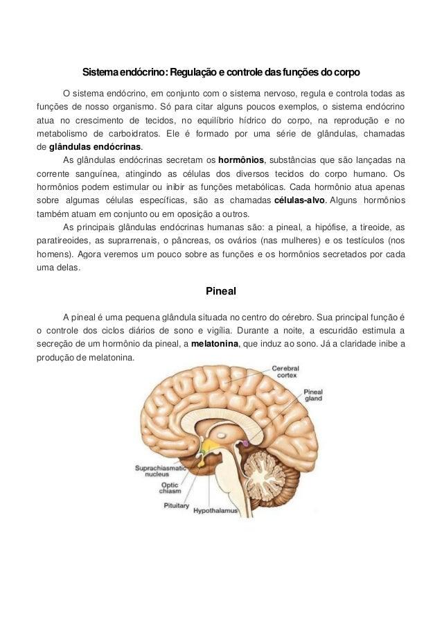 Sistema endócrino: Regulação e controle das funções do corpo O sistema endócrino, em conjunto com o sistema nervoso, regul...
