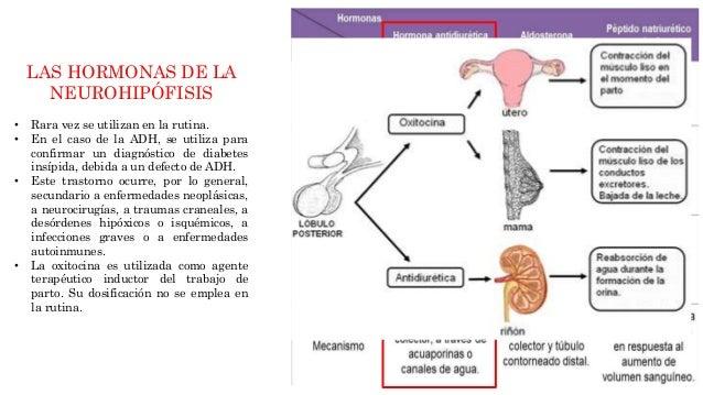 Laboratorio Clínico de Endocrinología