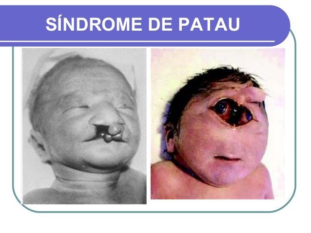 Sistema Endocrino 5662141