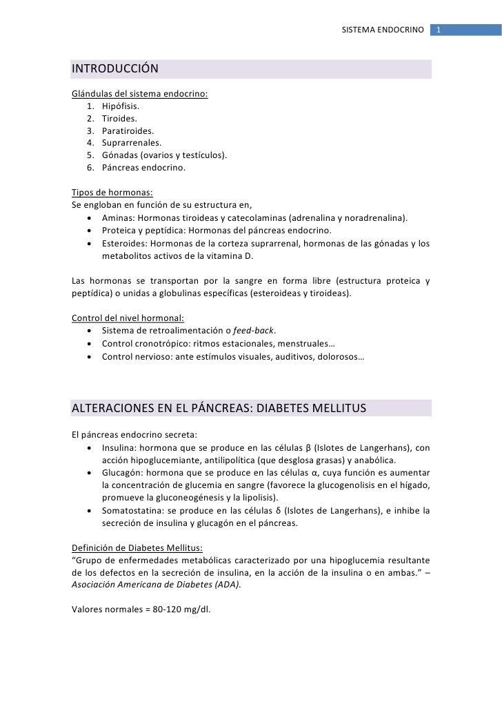 Único Anatomía Y Fisiología Del Sistema Endocrino Cuestionario ...