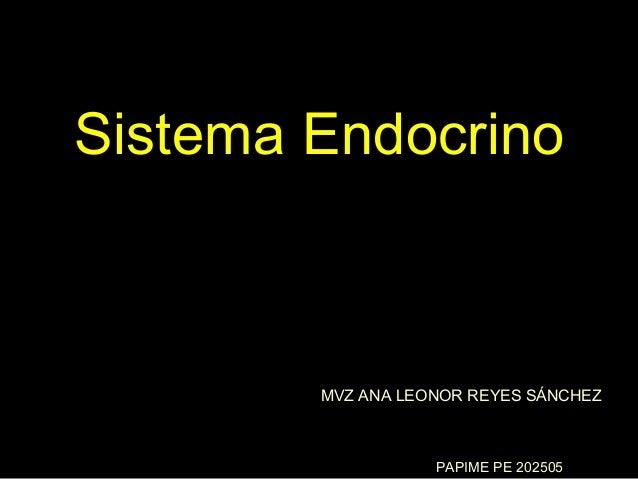 Sistema Endocrino        MVZ ANA LEONOR REYES SÁNCHEZ                   PAPIME PE 202505