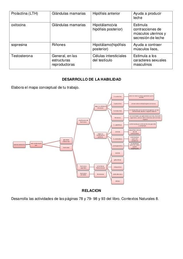 ciclo testosterona winstrol y clenbuterol