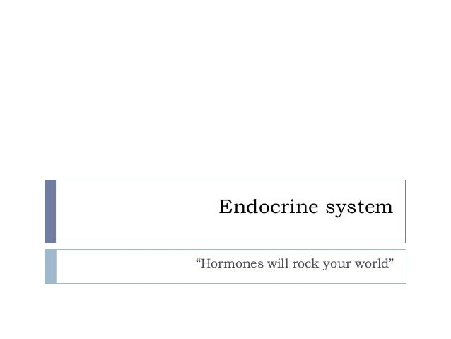 "Endocrine system""Hormones will rock your world"""