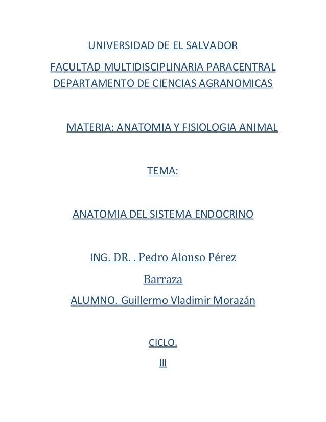 UNIVERSIDAD DE EL SALVADORFACULTAD MULTIDISCIPLINARIA PARACENTRALDEPARTAMENTO DE CIENCIAS AGRANOMICASMATERIA: ANATOMIA Y F...