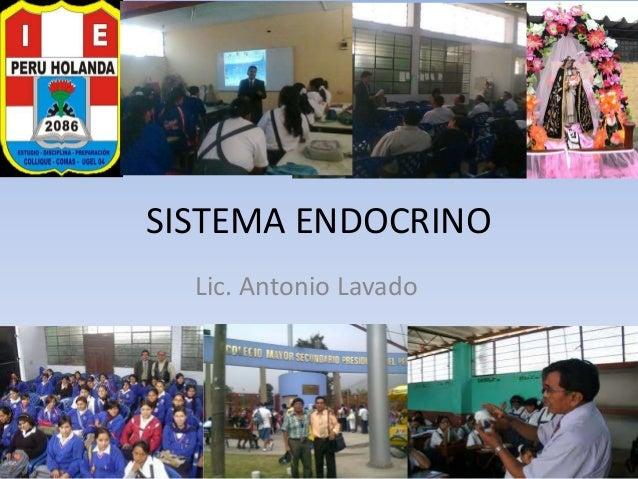 SISTEMA ENDOCRINO Lic. Antonio Lavado