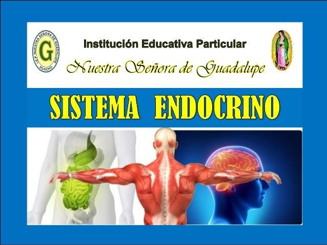 IV - Unidad : Biología Tema: SISTEMA ENDOCRINO I.E.P «Nuestra Señora de Guadalupe» El sistema endocrino está formado por u...