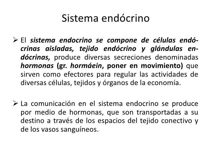 Sistema Endocrino - Parte 1