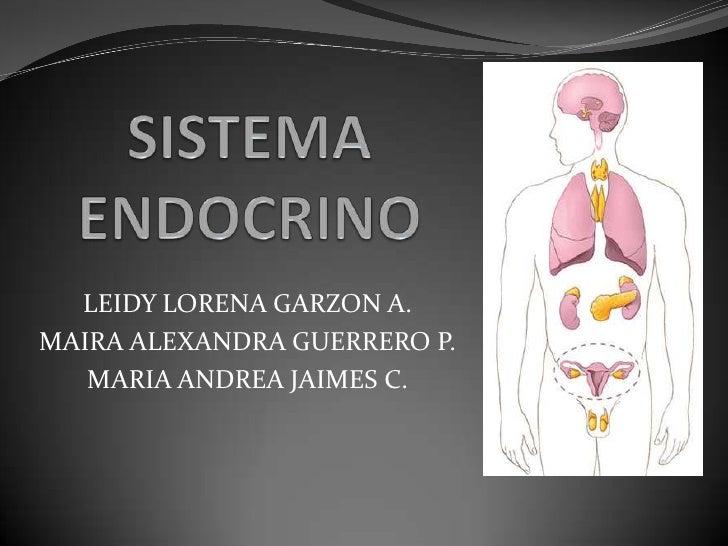 LEIDY LORENA GARZON A.MAIRA ALEXANDRA GUERRERO P.   MARIA ANDREA JAIMES C.
