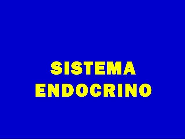 SISTEMAENDOCRINO