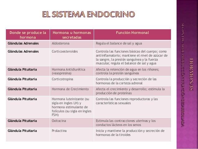 Sistema Endocrino - Generalidades - La Hormona: Caracteristicas y Fun…