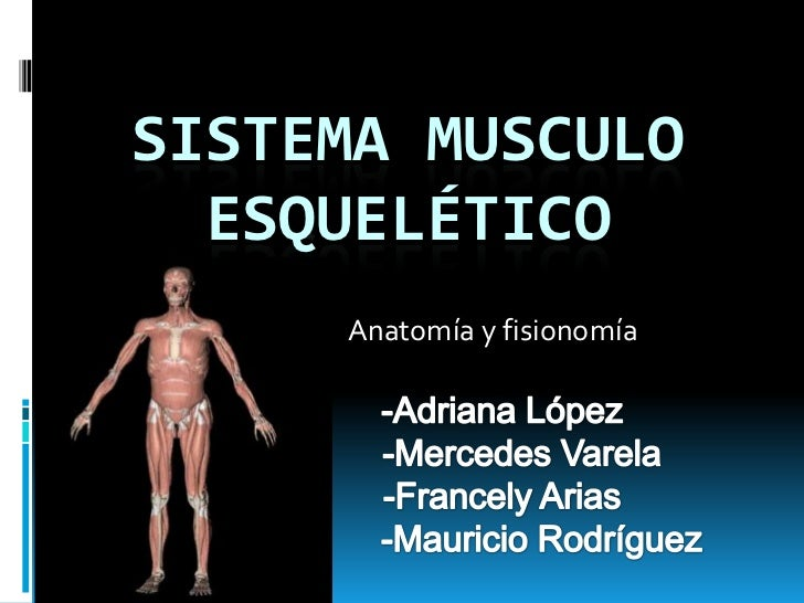 SISTEMA MUSCULO  ESQUELÉTICO     Anatomía y fisionomía