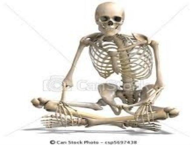 Sistema Esqueletico 32326104 on Downloads 2