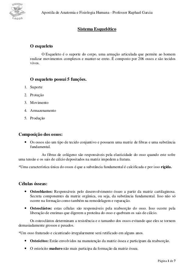 Apostila de Anatomia e Fisiologia Humana - Professor Raphael GarciaPágina 1 de 7Sistema EsqueléticoO esqueletoO Esqueleto ...