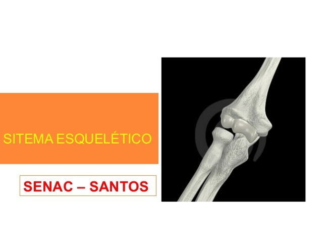SITEMA ESQUELÉTICO SENAC – SANTOS