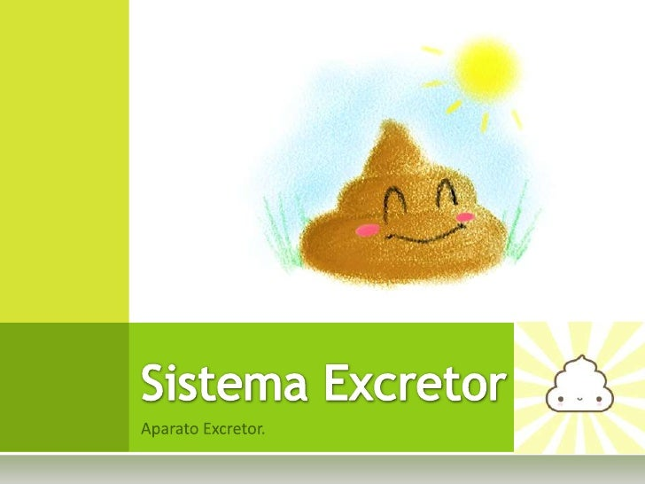 AparatoExcretor.<br />Sistema Excretor<br />