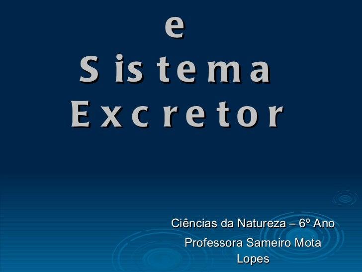 Respiração Celular e Sistema Excretor Ciências da Natureza – 6º Ano Professora Sameiro Mota Lopes