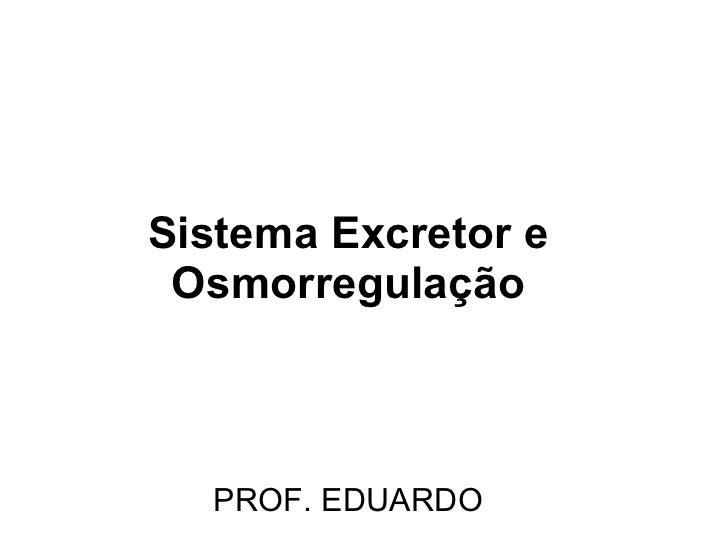 Sistema Excretor e Osmorregulação PROF. EDUARDO