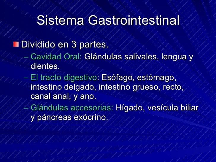 Sistema Gastrointestinal <ul><li>Dividido en 3 partes. </li></ul><ul><ul><li>Cavidad Oral:  Glándulas salivales, lengua y ...