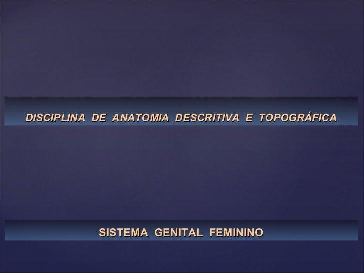 DISCIPLINA  DE  ANATOMIA  DESCRITIVA  E  TOPOGRÁFICA SISTEMA  GENITAL  FEMININO