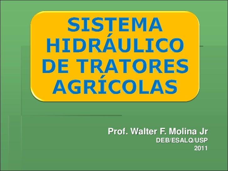 Prof. Walter F. Molina Jr            DEB/ESALQ/USP                      2011