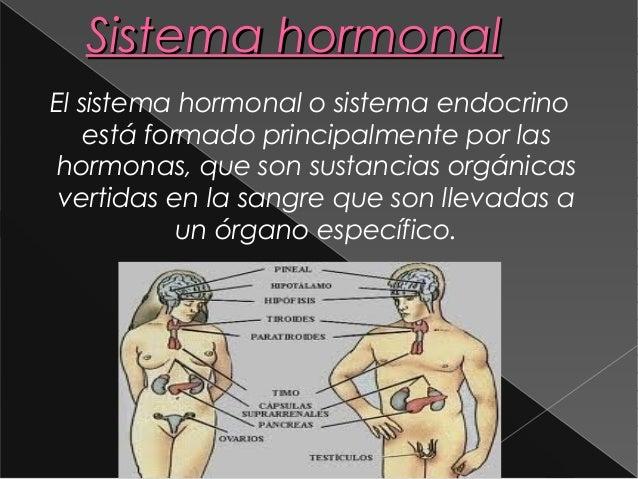 Sistema hormonalEl sistema hormonal o sistema endocrino    está formado principalmente por lashormonas, que son sustancias...