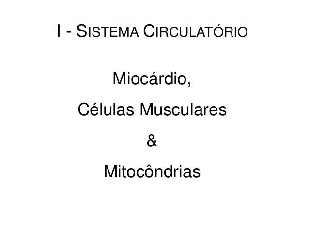 I - SISTEMA CIRCULATÓRIOMiocárdio,Células Musculares&Mitocôndrias