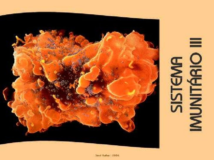 Sistema imunitário 3