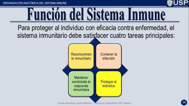 El sistema inmunológico - Generalidades