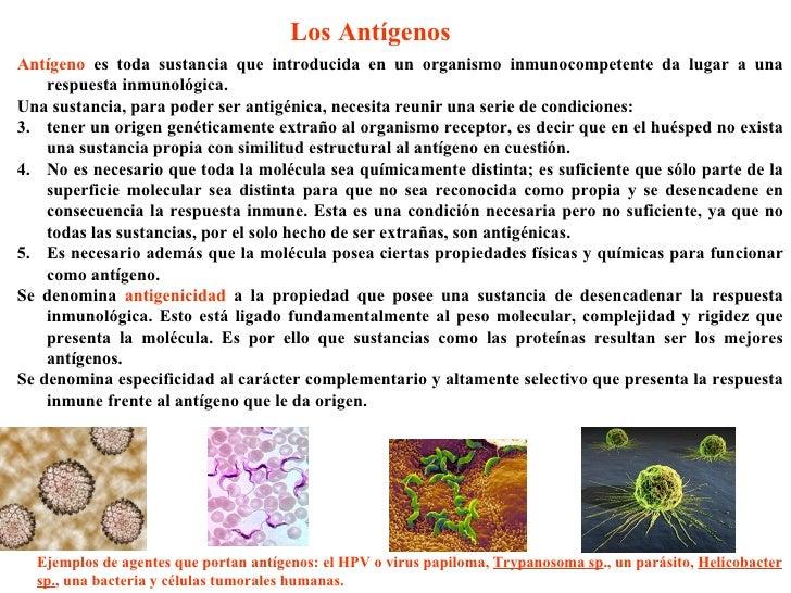 Sistema inmunitario - Inmobiliaria origen ...