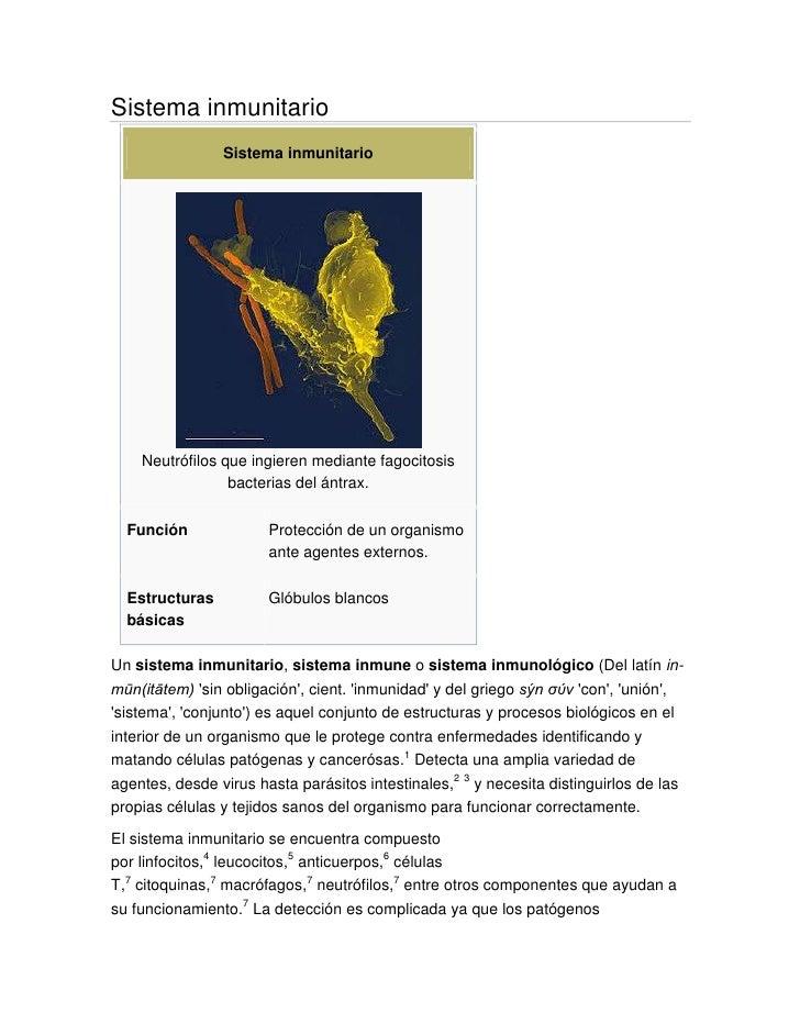 Sistema inmunitario<br />Sistema inmunitarioNeutrófilos que ingieren mediante fagocitosis bacterias del ántrax.FunciónProt...