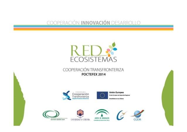 «Écosystèmes d'accompagnement pour l'entrepreneuriat et l'innovation dans le milieu rural: secteurs oléicole et de la pâti...