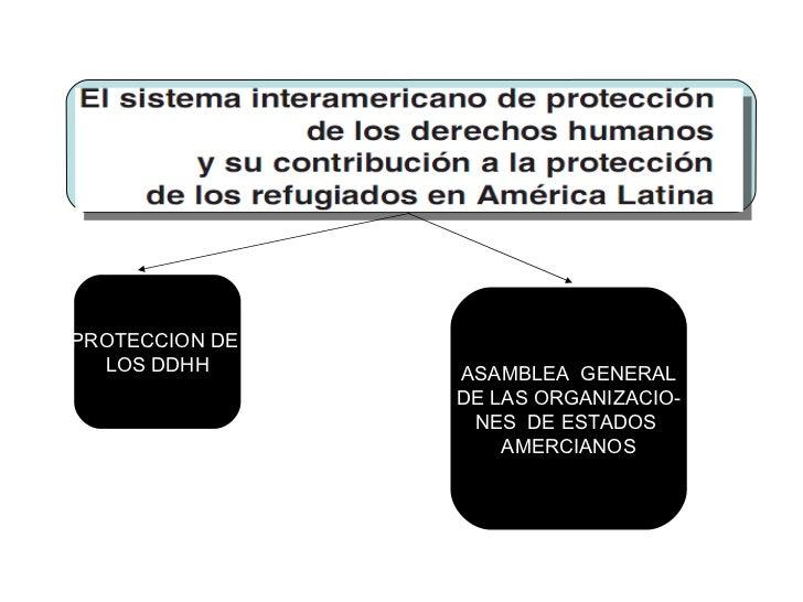 PROTECCION DE  LOS DDHH ASAMBLEA  GENERAL DE LAS ORGANIZACIO- NES  DE ESTADOS  AMERCIANOS