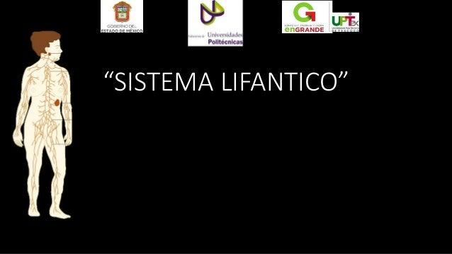"""SISTEMA LIFANTICO"""