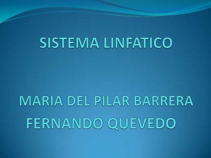 LINFA                     90 % de          Desecho     agua                                Glucosa          CelularDióxido...