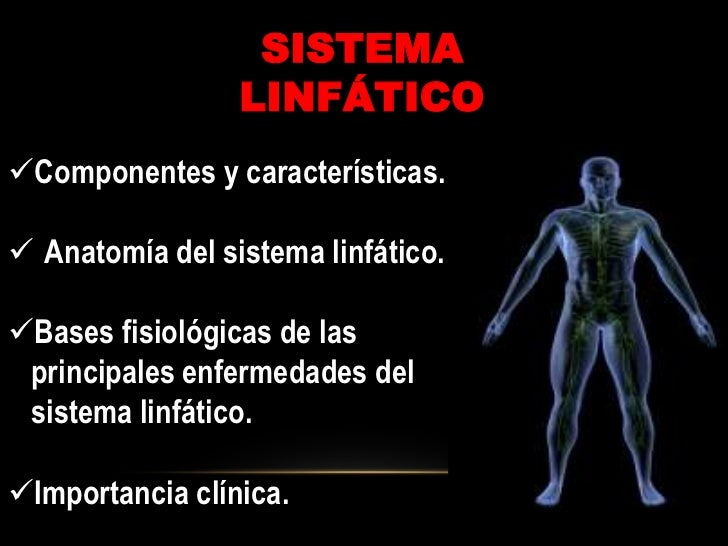 sistema-linftico-4-728.jpg?cb=1282086610