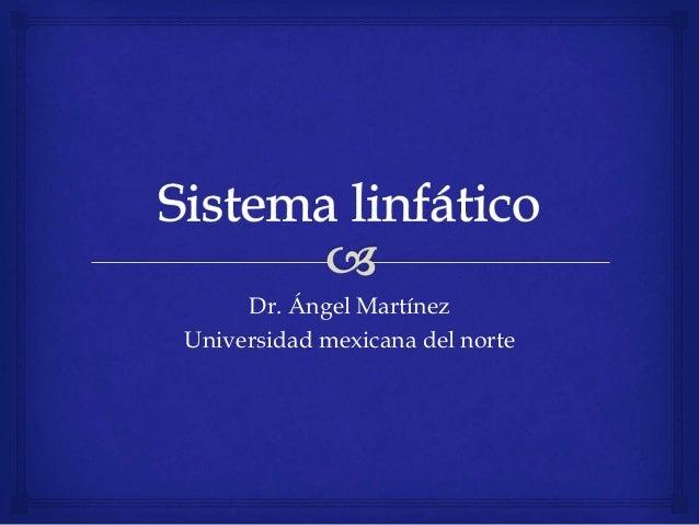 Dr. Ángel Martínez Universidad mexicana del norte