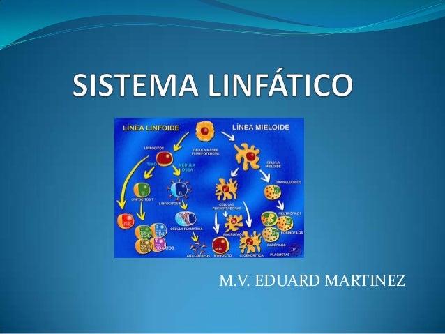 M.V. EDUARD MARTINEZ