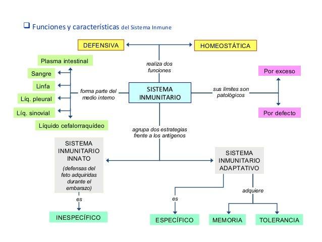 Sistema linfático e inmunologico