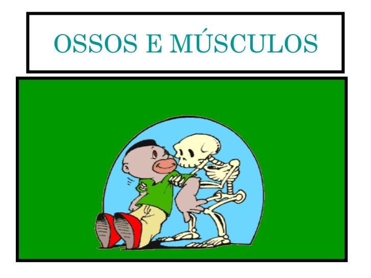 OSSOS E MÚSCULOS