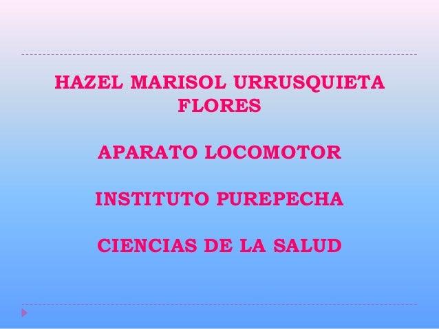 HAZEL MARISOL URRUSQUIETA         FLORES   APARATO LOCOMOTOR   INSTITUTO PUREPECHA   CIENCIAS DE LA SALUD