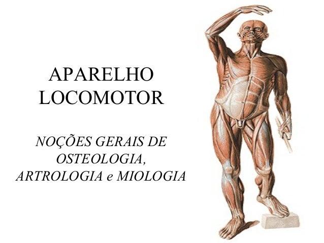 APARELHO LOCOMOTOR NOÇÕES GERAIS DE OSTEOLOGIA, ARTROLOGIA e MIOLOGIA