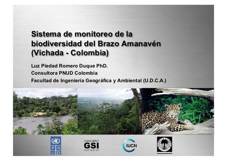 Sistema de monitoreo de labiodiversidad del Brazo Amanavén(Vichada - Colombia)Luz Piedad Romero Duque PhD.Consultora PNUD ...