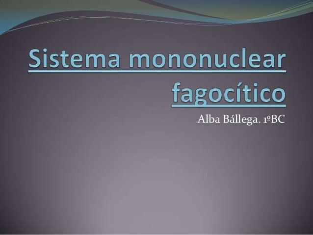 Alba Bállega. 1ºBC