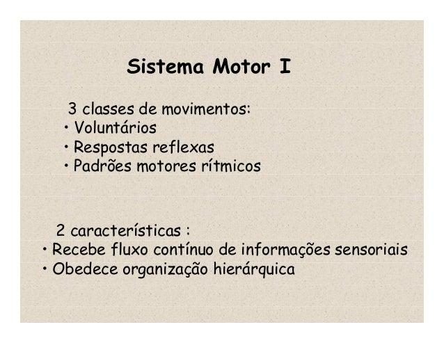 Sistema Motor I 3 classes de movimentos: • Voluntários • Respostas reflexas • Padrões motores rítmicos 2 características :...